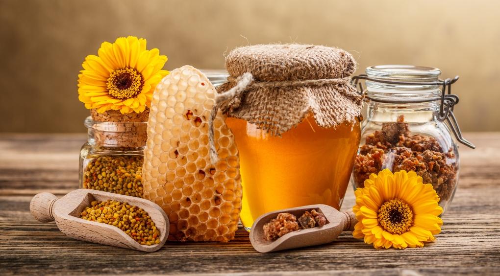 """თაფლი """"ტენტორიუმის"""" საფუტკრეებიდან"""